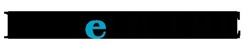 Logo DSAeOLTRE